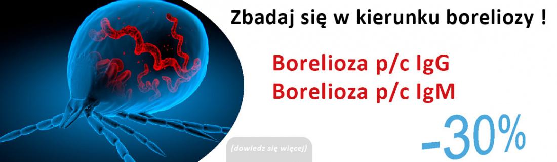 Slider slider-strona-internetowa_1_2.jpg